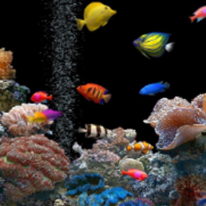 SALT WATER AQUARIUM Diamond Painting Kit Paint with Diamonds Kit