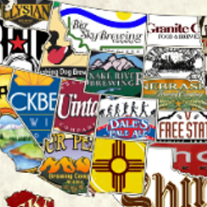 USA CRAFT BEER MAP Diamond Painting Kit Paint with Diamonds Kit