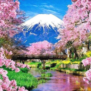CHERRY BLOSSOM MOUNTAIN Diamond Painting Kit Paint with Diamonds Kit