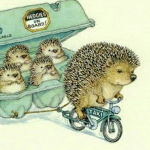 HEDGIES ON BOARD Diamond Painting Kit Paint with Diamonds Kit