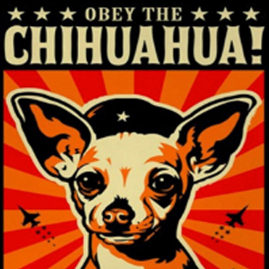 OBEY THE CHIHUAHUA Diamond Painting Kit Paint with Diamonds Kit