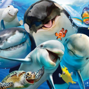 OCEAN LIFE SELFIE Diamond Painting Kit Paint with Diamonds Kit