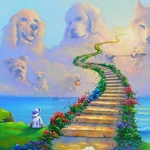 DOG HEAVEN RAINBOW BRIDGE Sit Diamond Painting Kit Paint with Diamonds Kit