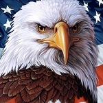 AMERICAN BALD EAGLE & FLAG Diamond Painting Kit Paint with Diamonds Kit