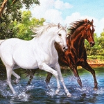 TWO HORSES Diamond Painting Kit Paint with Diamonds Kit