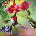 HUMMINGBIRDS Diamond Painting Kit Paint With Diamonds Kit