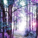 PURPLE FOREST Diamond Painting Kit Paint with Diamonds Kit