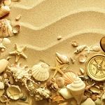 SANDY SEASHELLS Diamond Painting Kit Paint with Diamonds Kit