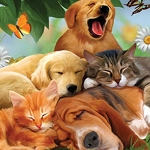 SLEEPING PUPS & KITTENS Diamond Painting Kit Paint with Diamonds Kit