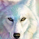 SNOW WOLF EYES Diamond Painting Kit Paint with Diamonds Kit