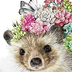 SUCCULENT HEDGEHOG Diamond Painting Kit Paint with Diamonds Kit