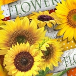 SUNFLOWER GARDEN Diamond Painting Kit Paint with Diamonds Kit