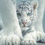 WHITE TIGER CUB Diamond Painting Kit Paint with Diamonds Kit