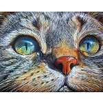 CAT EYE GAZE Diamond Painting Kit Paint with Diamonds Kit
