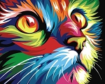 COLORFUL CAT Diamond Painting Kit Paint with Diamonds Kit