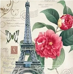 RED FLOWERS POSTCARDS FROM PARIS Diamond Painting Kit Paint with Diamonds Kit