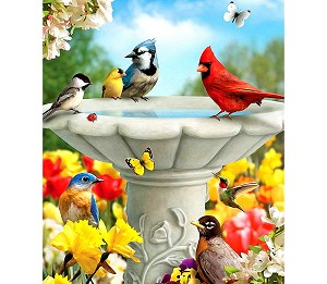 BIRD BATH Diamond Painting Kit Paint with Diamonds Kit