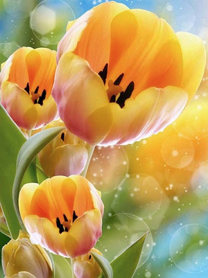YELLOW TULIPS Diamond Painting Kit Paint with Diamonds Kit